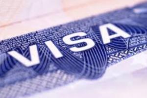 SCI IVF Visa Assistance